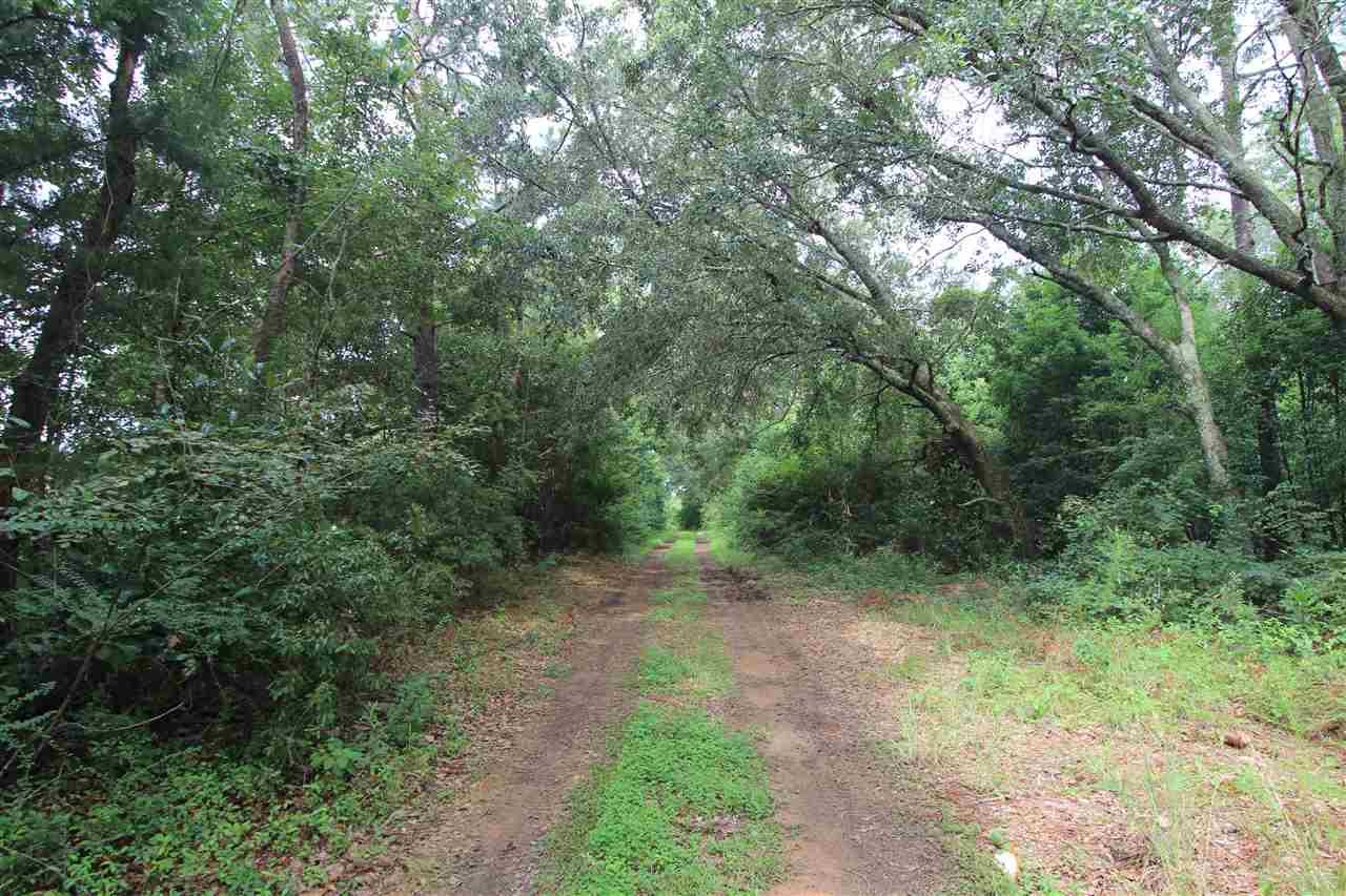 County Road 55 Summerdale, AL 36580