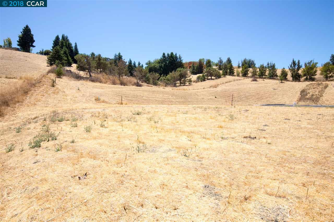 1240 Culet Ranch Rd Danville, CA 94506