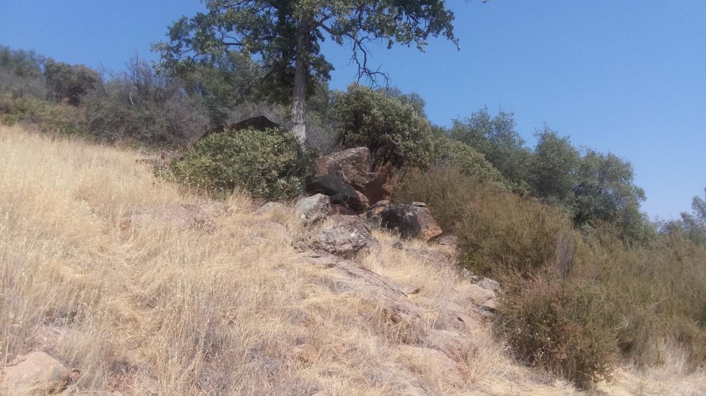 2153 Roan Road Angels Camp, CA 95222
