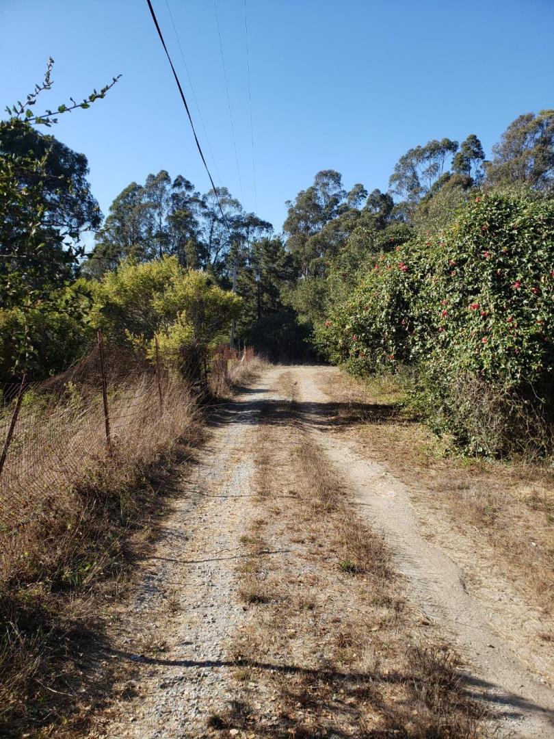 Hawk Haven Road Watsonville, CA 95076
