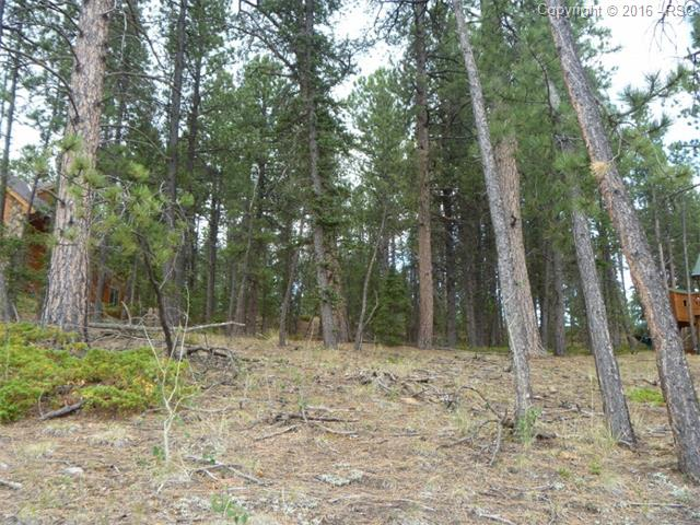 1615  Masters Drive Woodland Park, CO 80863