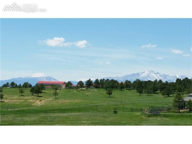 16375  Open Sky Way Colorado Springs, CO 80908