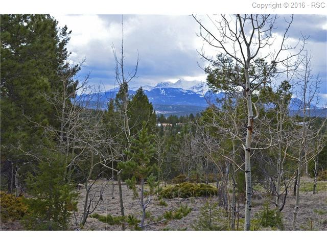 360  Gentian Road Woodland Park, CO 80963