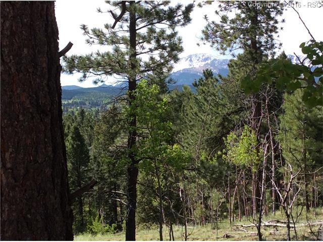 198  Summit Road Woodland Park, CO 80863