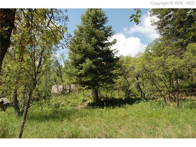 5920  Gladstone Street Colorado Springs, CO 80906