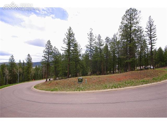 1310  Spruce Ridge Lane Woodland Park, CO 80863