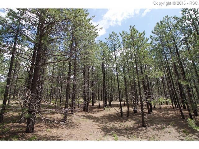 15910  Fools Gold Lane Colorado Springs, CO 80921