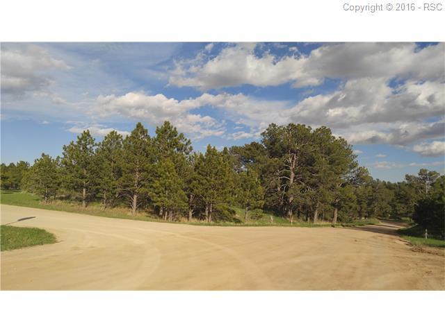 18310  Steeplechase Drive Peyton, CO 80831