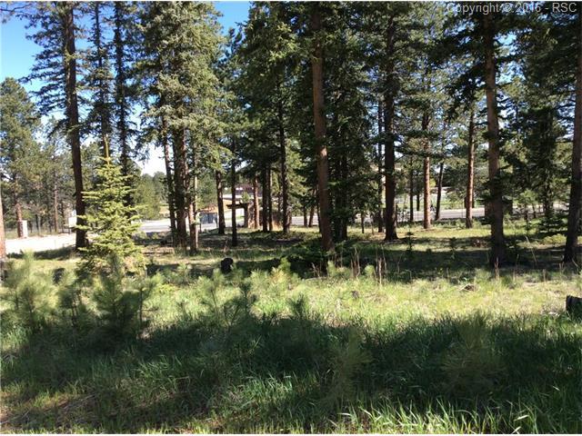 1265  Cottontail Trail Woodland Park, CO 80863