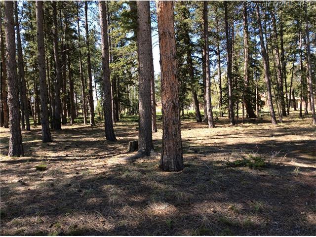 625  Chipmunk Drive Woodland Park, CO 80863