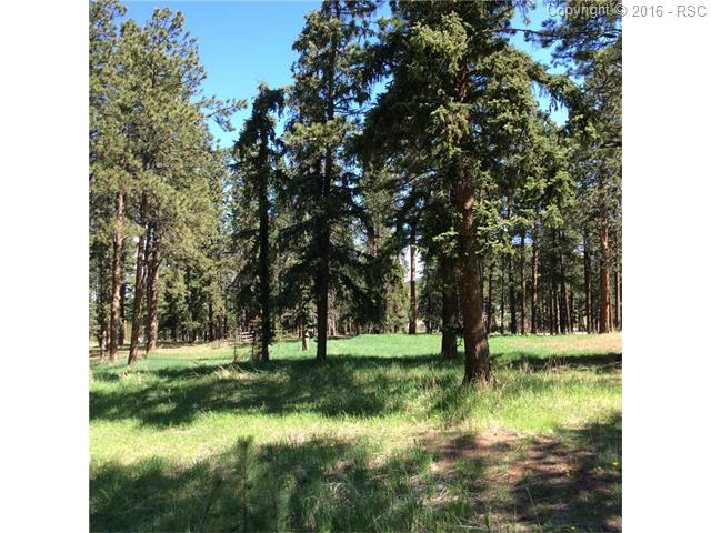 630  Meadowlark Lane Woodland Park, CO 80863