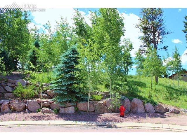 511  Falcons Rest Place Woodland Park, CO 80863