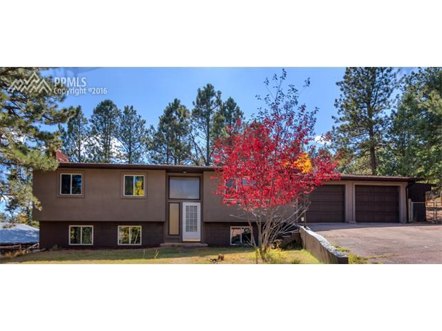 1119 W Midland Avenue Woodland Park, CO 80863