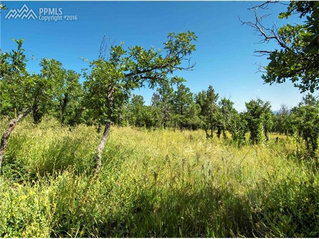 Oakmoor Heights Colorado Springs, CO 80906