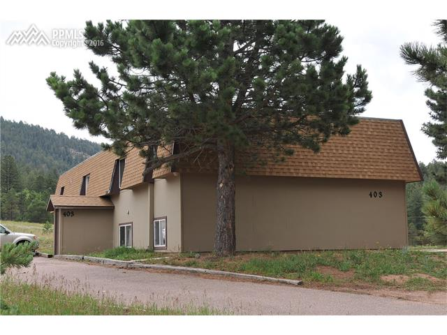 403  Mountain View Place Woodland Park, CO 80863
