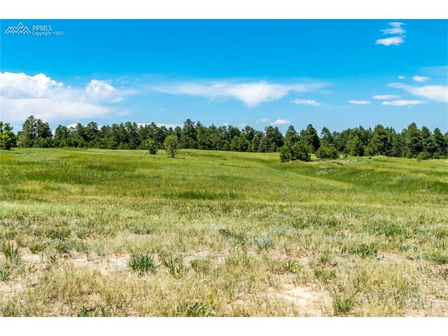 17275  Gwilym Court Monument, CO 80132