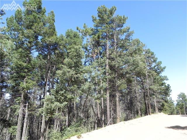 13910  Boulder Lane Larkspur, CO 80118
