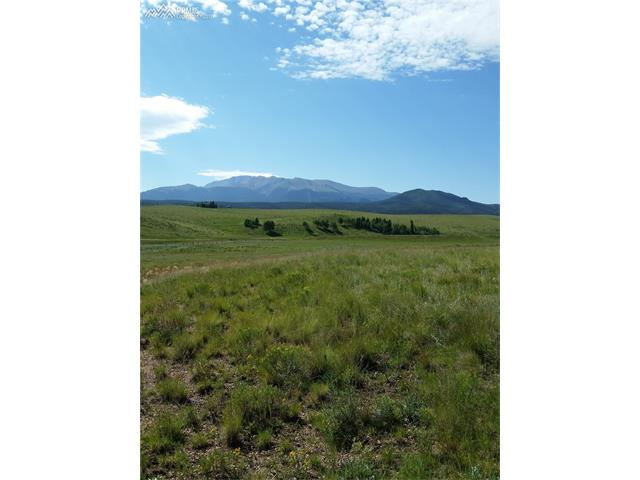 500  Pinaceae Heights Divide, CO 80814