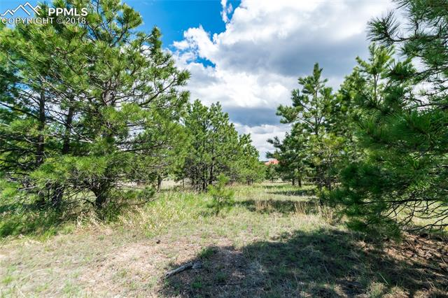 1605 Trumpeters Court Monument, CO 80132