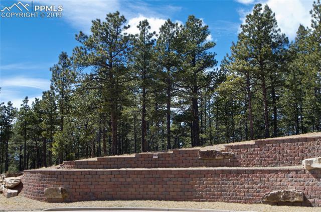 961 Spacious Skies Drive Woodland Park, CO 80863