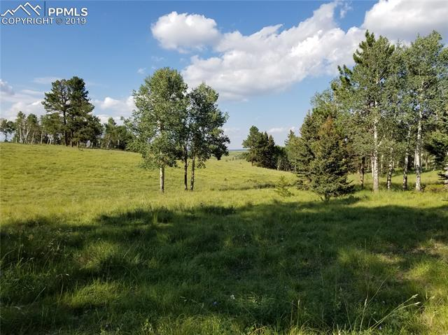 9615 W Highway 24 Divide, CO 80814