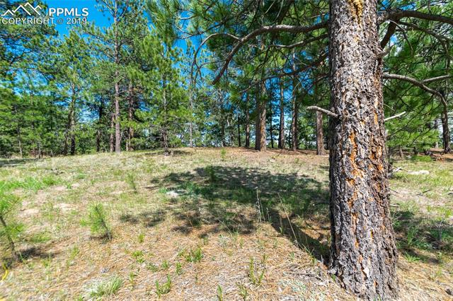 1610 Trumpeters Court Monument, CO 80132