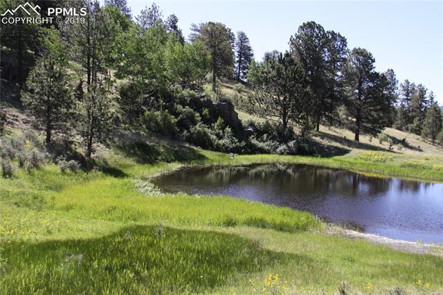 Teller 1 Road Cripple Creek, CO 80813