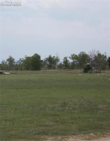 5740 Coyote Lane Peyton, CO 80831