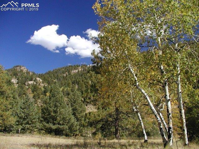 Secluded Canyon Heights Florissant, CO 80816