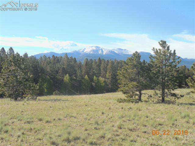 County 51 Road Divide, CO 80814
