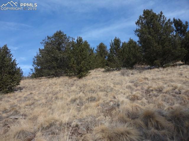 Rhyolite Mountain Mesa Road Cripple Creek, CO 80813