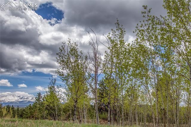 585 Pembrook Drive Woodland Park, CO 80863