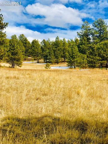 351 Apache Trail Florissant, CO 80816