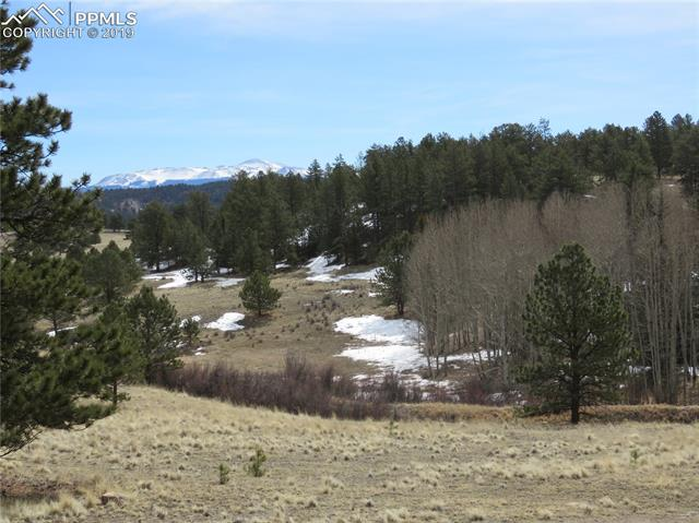 1562 County 403 Road Lake George, CO 80827