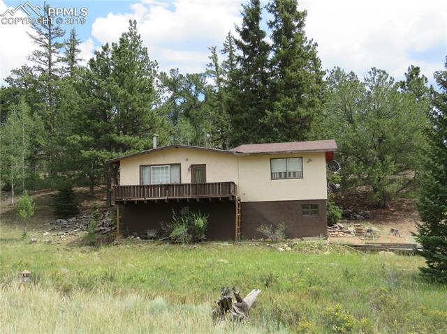 60 Perch Drive Lake George, CO 80827
