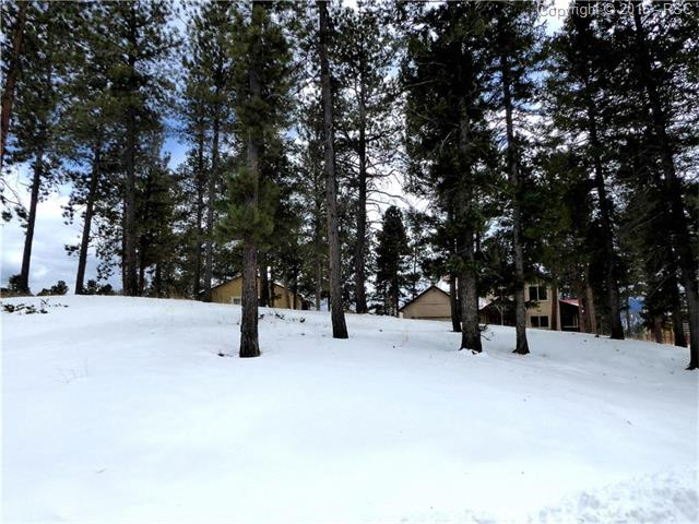 331  Panther Court Woodland Park, CO 80863