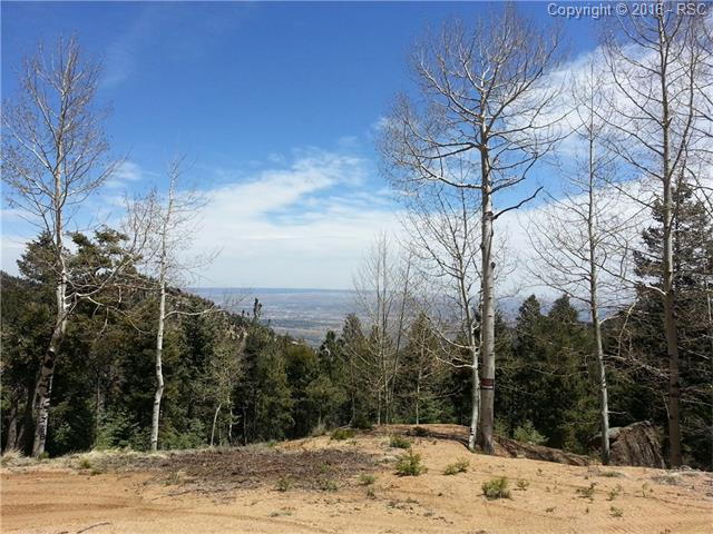 705  Steep Road Manitou Springs, CO 80829