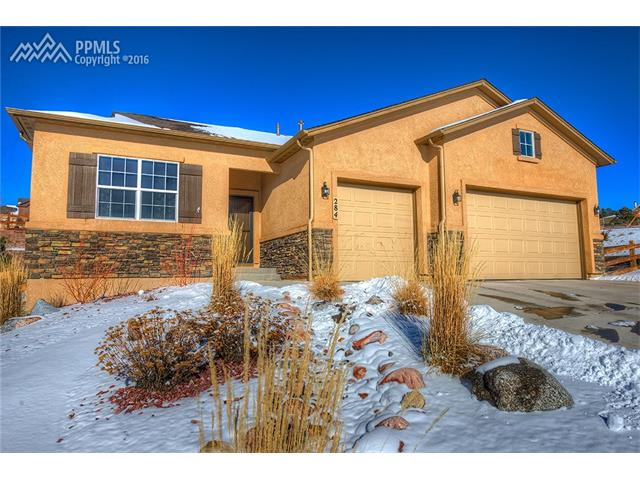 284  Reading Way Monument, CO 80132