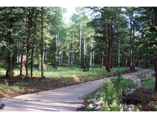 492  Nichole Grove Woodland Park, CO 80863
