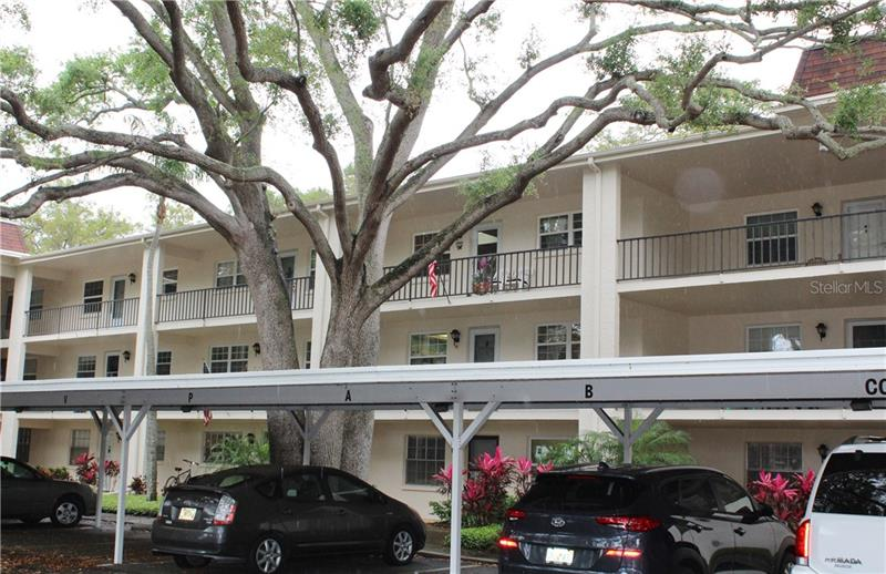 865 Virginia Court UNIT #203 Dunedin, FL 34698