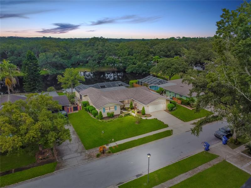 1943 Forest View Drive Palm Harbor, FL 34683