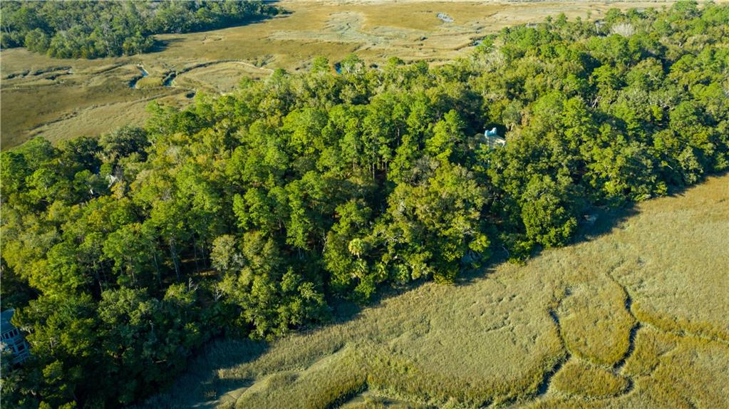 Lot 7 Mission Drive Darien, GA 31305