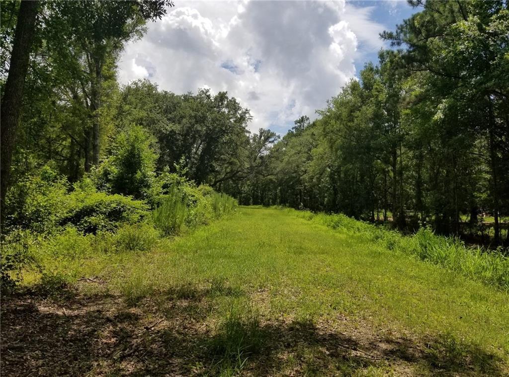 539 Green Swamp Rd Road Brunswick, GA 31525