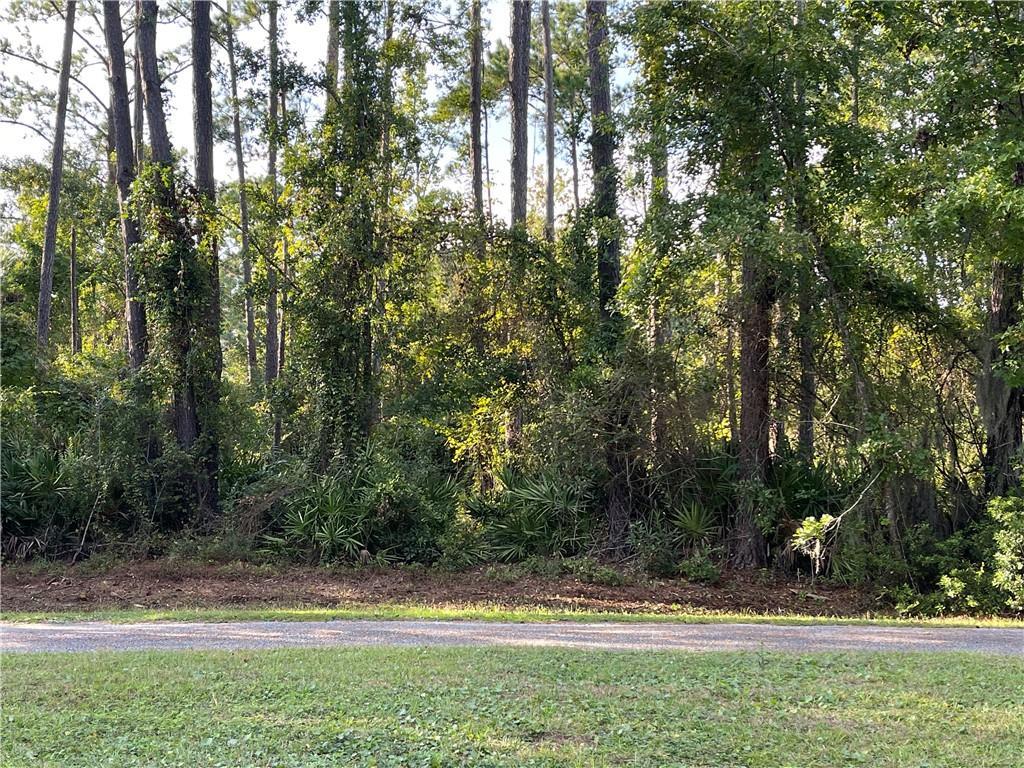 206 Palm Trace Brunswick, GA 31525