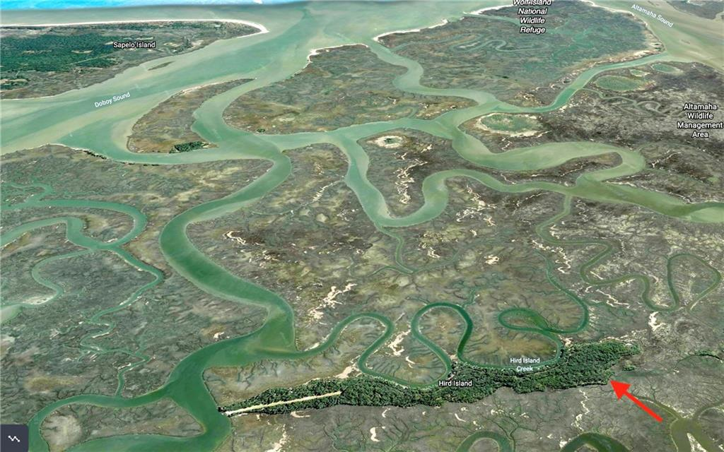 60-66 Blk L Bal Mar Hird Island Darien, GA 31305