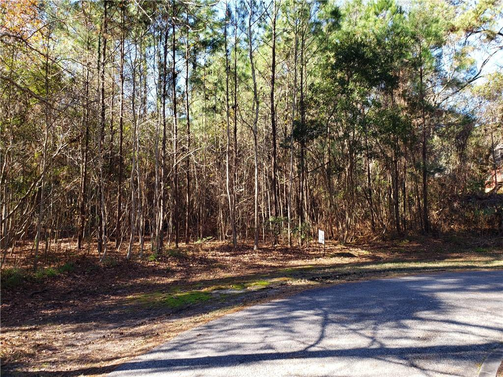 103 Marsh Oak Court Brunswick, GA 31525