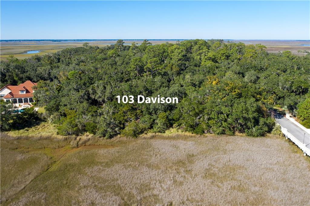 103 Davison Lane St. Simons Island, GA 31522