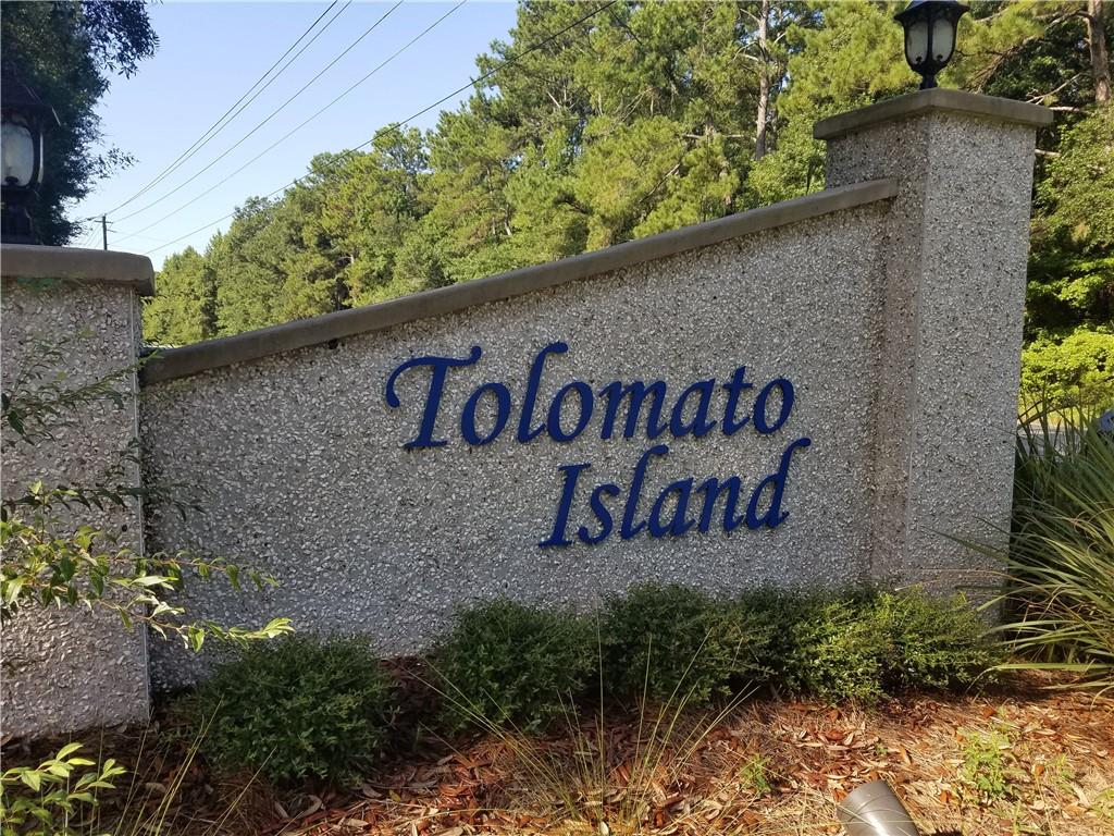 LOT 15 TOL Tolomato Drive Darien, GA 31305