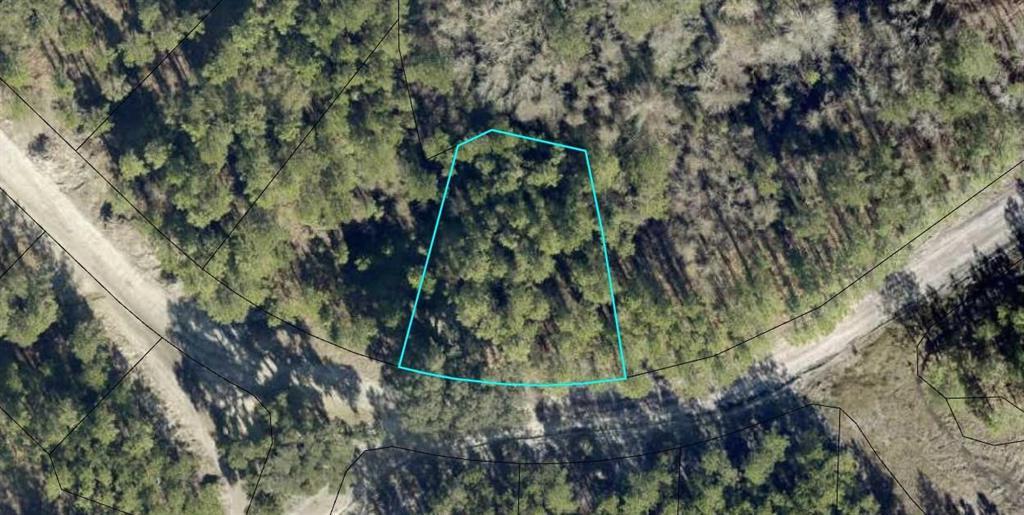 Lot 220 Coastal Marsh Blvd Waverly, GA 31565