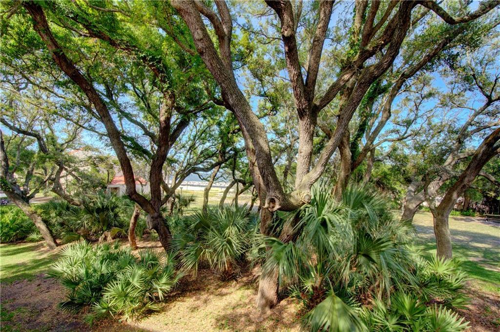 1175 Beachview Drive UNIT #290 Jekyll Island, GA 31527